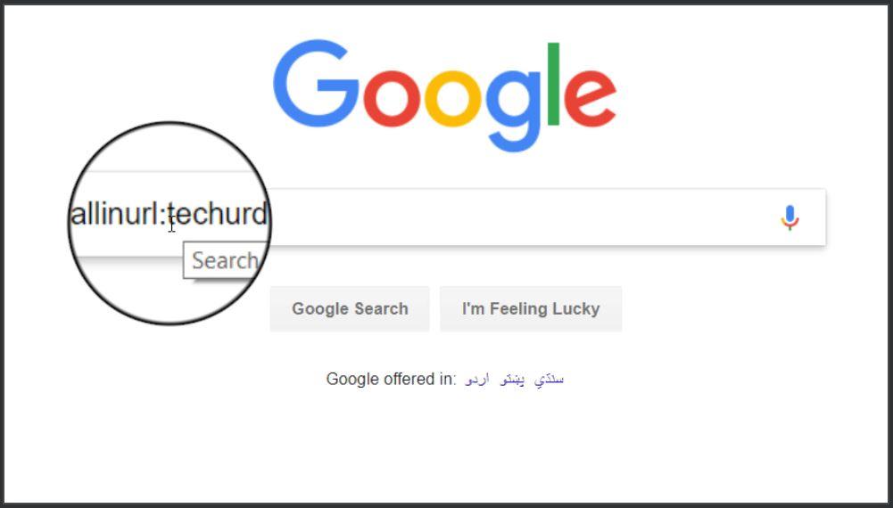 Google Search by URL, Title, Text, Body - Tech Urdu