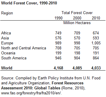 World Forest Area Still on the Decline | Complete Essay with Outline - techurdu.net