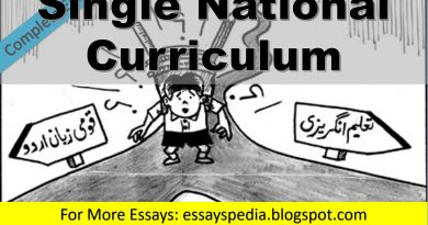 Single National Curriculum | Complete Essay with Outline - techurdu.net